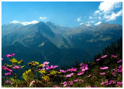 Gift your special one a romantic break in the beautiful city of Manali with adventur in Manali