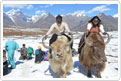 Tourist Attractions Manali-Rohtang Pass-Solang Valley-Beas Kund-Major Tourist Attractions in Kullu